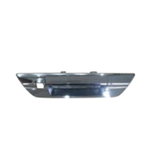 TAIL GATE HANDLE WITH HOLE